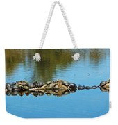 Family Of Turtles Weekender Tote Bag