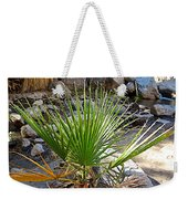 Fan Palm Leaf Over Andreas Creek In Indian Canyons-ca Weekender Tote Bag
