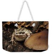 Fat Frog Weekender Tote Bag by Jean Noren