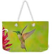 Fawn-breasted Brilliant Hummingbird Weekender Tote Bag
