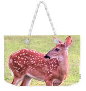 Fawn In The Waning Summer Weekender Tote Bag