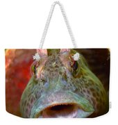 Feather Blenny - A Fish  Weekender Tote Bag
