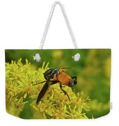 Feather-legged Fly On Goldenrod - Trichopoda Weekender Tote Bag