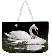 Feather Sun Shade Weekender Tote Bag