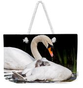 Feather Sunshade Square Weekender Tote Bag