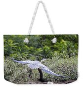 Feathering Flight Weekender Tote Bag