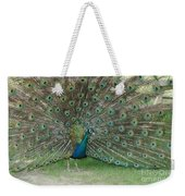 Feathers On Display Weekender Tote Bag