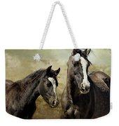 Feldspar And Ohanzee  - Pryor Mustangs Weekender Tote Bag by Belinda Greb