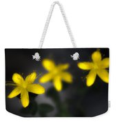 Fell Through Yellow Weekender Tote Bag