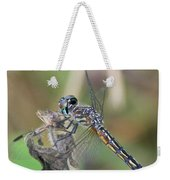 Female Blue Dasher In July  Weekender Tote Bag