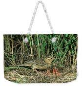 Female Bobolink At Nest Weekender Tote Bag