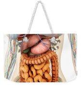 Female Body Showing Digestive Weekender Tote Bag