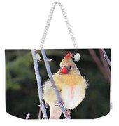 Female Cardinal In Tree Weekender Tote Bag