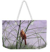 Female Cardinal In Willow Weekender Tote Bag