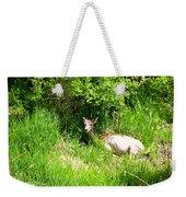 Female Deer Resting Weekender Tote Bag