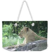 Female Lion On Guard Weekender Tote Bag