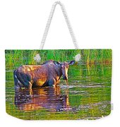 Female Moose Near Airport In Chicken-alaska   Weekender Tote Bag