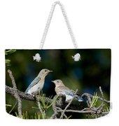 Female Mountain Bluebird With Fledgling Weekender Tote Bag