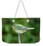 Female Painted Bunting Passerina Ciris Weekender Tote Bag