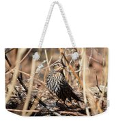 Female Red-winged Blackbird Weekender Tote Bag