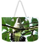 Female Ruby Throated Hummingbird Weekender Tote Bag