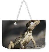 Female Striped Lizard Weekender Tote Bag