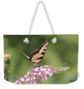 Female Tiger Butterly-1-featured In Macro-comfortable Art And Newbies Groups Weekender Tote Bag