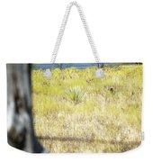 Fence Pasture Horse 14419 Weekender Tote Bag