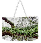 Resurrection Fern On The Limbs Weekender Tote Bag