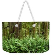 1a2912-ferns In Rain Forest Canada  Weekender Tote Bag