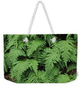 D3b6333-ferns In Sonoma 2  Weekender Tote Bag
