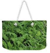 D3b6327-ferns In Sonoma Weekender Tote Bag