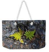 Ferns In Volcanic Rock Weekender Tote Bag