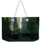 Ferns Of The Redwood Forest Weekender Tote Bag