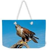 Ferruginous Hawk About To Take Weekender Tote Bag