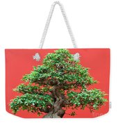 Ficus Bonsai Weekender Tote Bag