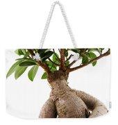 Ficus Ginseng Weekender Tote Bag