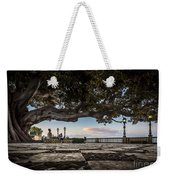 Ficus Magnonioide In The Alameda De Apodaca Cadiz Spain Weekender Tote Bag