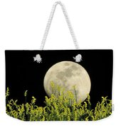 Field Of Gold By Moonlight Weekender Tote Bag