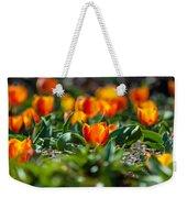 Field Of Orange Tulips Weekender Tote Bag
