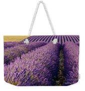 Fields Of Lavender Weekender Tote Bag