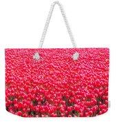 Fields Of Tulips Alkmaar Vicinity Weekender Tote Bag