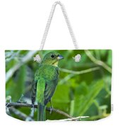 Fifty Shades Of Green Weekender Tote Bag