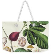 Fig Engraved By Johann Jakob Haid  Weekender Tote Bag
