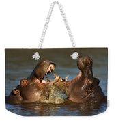 Fighting Hippo's Weekender Tote Bag