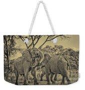 fighting male African elephants Weekender Tote Bag