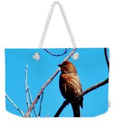 Finch On Branch 031015a Weekender Tote Bag