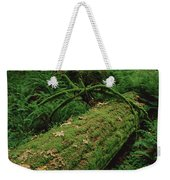 Fir Nurse Log In Rainforest Pacific Weekender Tote Bag