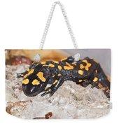 Fire Salamander Salamandra Salamandra Weekender Tote Bag