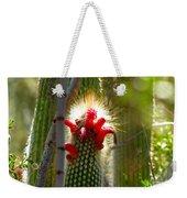 Firecracker Cacti Weekender Tote Bag